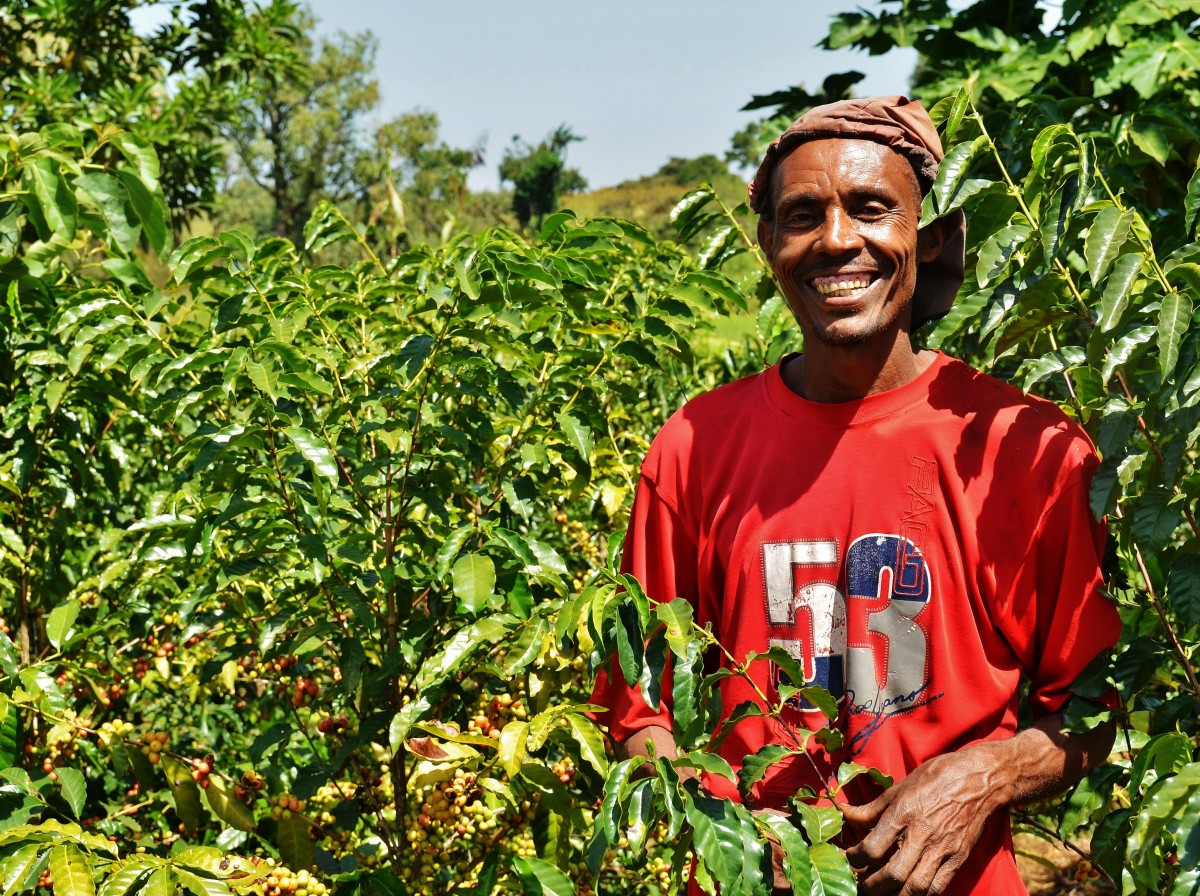 A farmer from the Belo region of Ethiopia is standing amongt his crop with a big smile - Gymtopia.org
